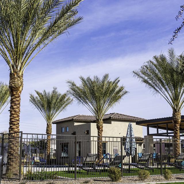 Avilla Paseo - Commercial Landscape Maintenance Phoenix