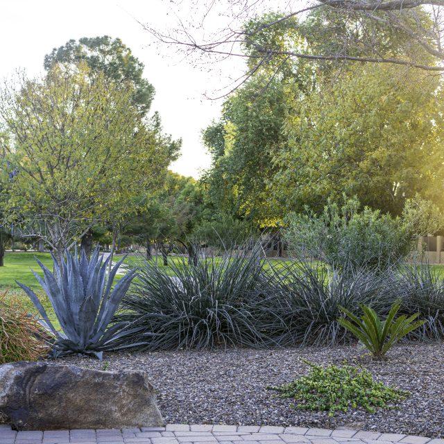 Hacienda-Del-Rey_2